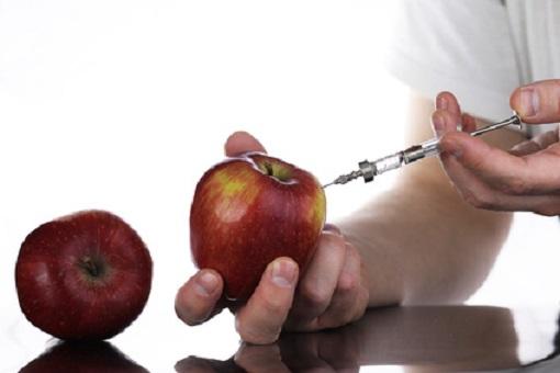 gentechnisch modifizierter Apfel