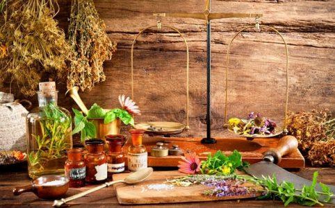 Auswahl verschiedener Heilmittel / Heilpflanzen