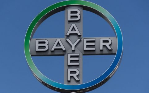 Das Bayer Logo